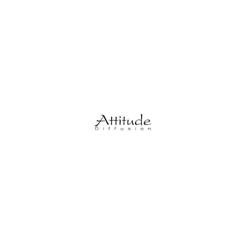 ATTITUDE DIFFUSION